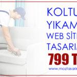 Koltuk Yıkama Sitesi Tasarımı Şok Kampanya!..